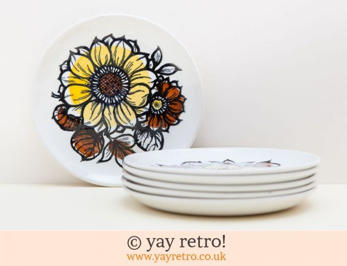 Staffordshire Pottery - Vintage Shop, Retro China, Glassware ...