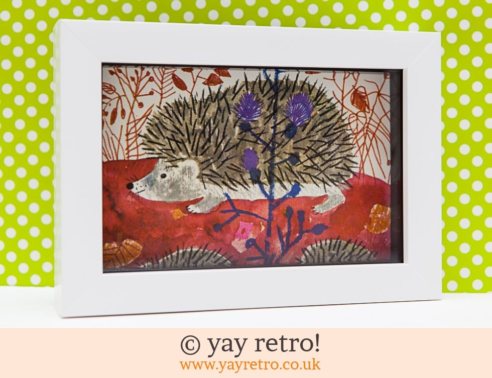 Framed 1974 Károly Reich Hedgehogs 6x4 (£7.50)