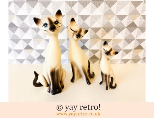 0: Tall Mid Century Siamese Cat Family - RARE find! (£25.00)