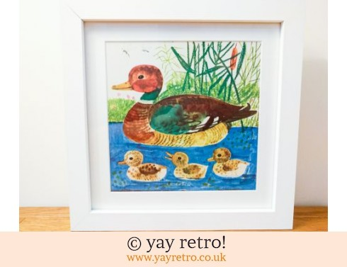 0: Framed 1974 Károly Reich Ducks 9x9 (£12.95)