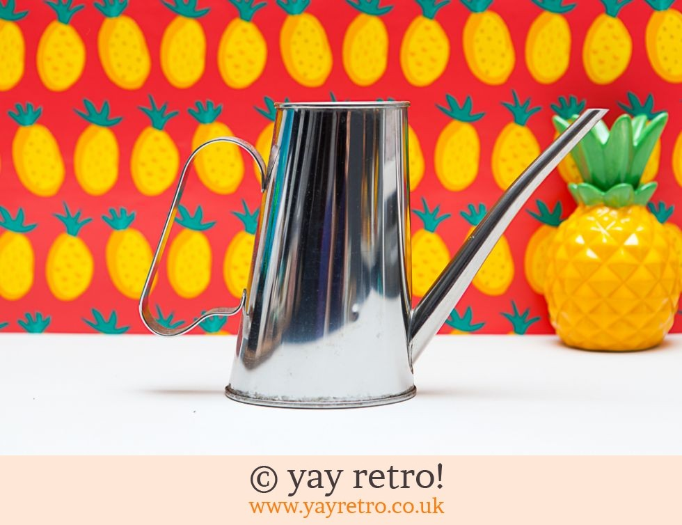 Stylish Chrome Watering Can (£9.00)