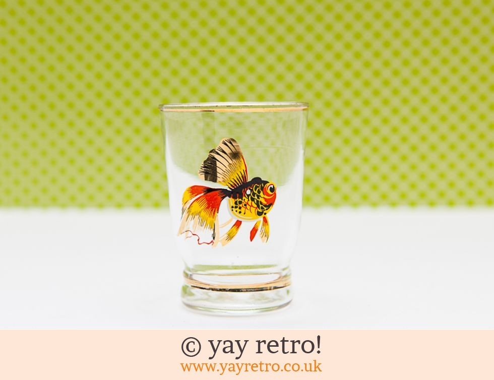 Tropical Fish 50s Shot Glass (£2.50)