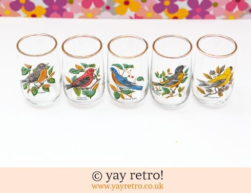 0: Vintage 1950/60s Bird Glasses x 5 (£11.00)
