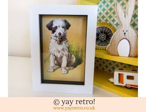 0: 1950s Ladybird Picture Framed Dog (£8.75)
