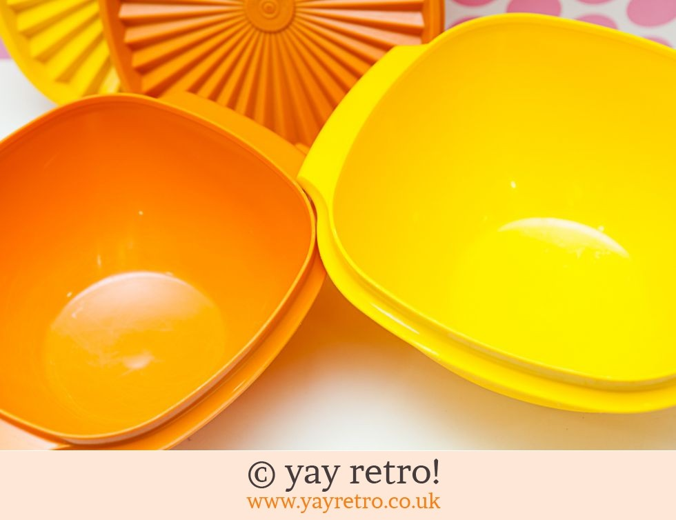 Tupperware Harvest Lidded Bowls (£20.00)
