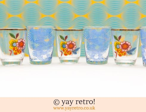 0: 9 Atomic & Flower Power Vintage Shot Glasses (£12.75)